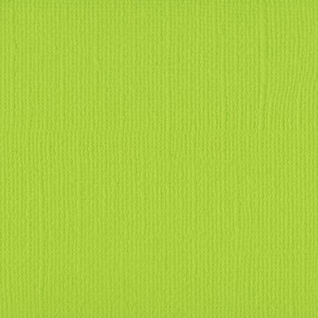 "Florence cardstock texture 12x12"" 216gram lime"