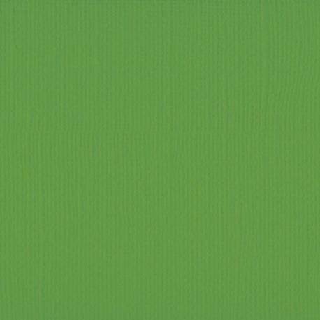 "Florence cardstock texture 12x12"" 216gram frog"