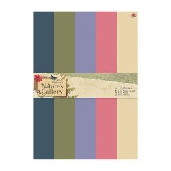 A4 Cardstock Packs (50pk) - Nature's Gallery