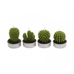 Teelicht Kaktus sortiert, B5 x T4 cm